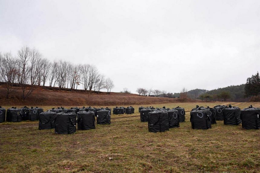 The farmlands of Iitate are now dotted with black bags - called 'flexible container bags'  - holding contaminated soil. Its residents have evacuated since the disaster at the Fukushima Daiichi Nuclear Plant in 2011.
