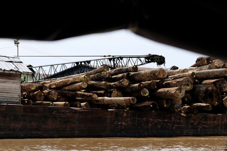 Logs along a river on the outskirts of Pontianak city, in West Kalimantan province.