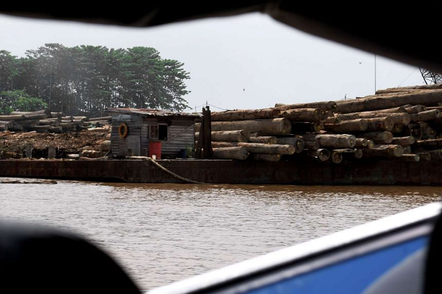 Logs along the river in the outskirts of Pontianak city, in West Kalimantan province, on Aug 5, 2016.