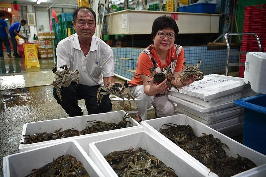 Madam Hong Ying Lien (right), director of High Fresh Trading, and general manager Lucas Ng displaying their new stock of hairy crabs from Holland yesterday. These crabs are more expensive than those from China.