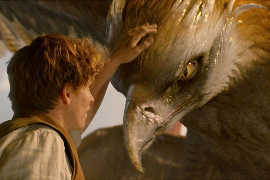 Cinema still of Fantastic Beasts And Where To Find Them starring Eddie Redmayne.