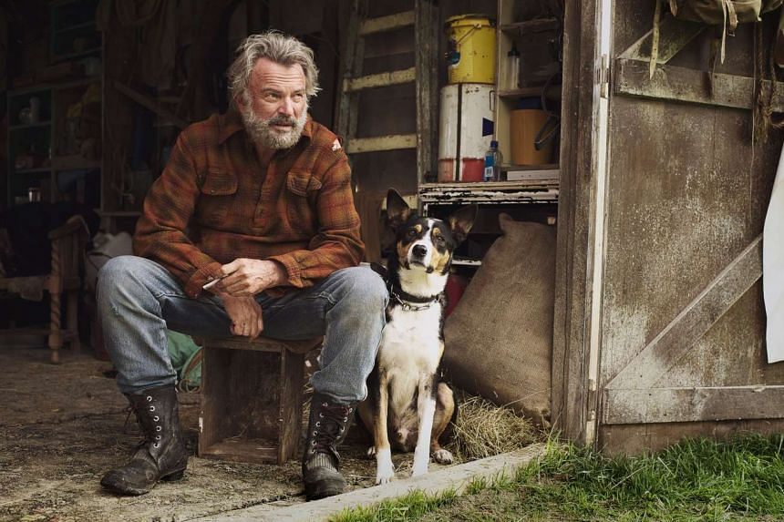 Sam Neill plays a reluctant father figure in Hunt For The Wilderpeople.