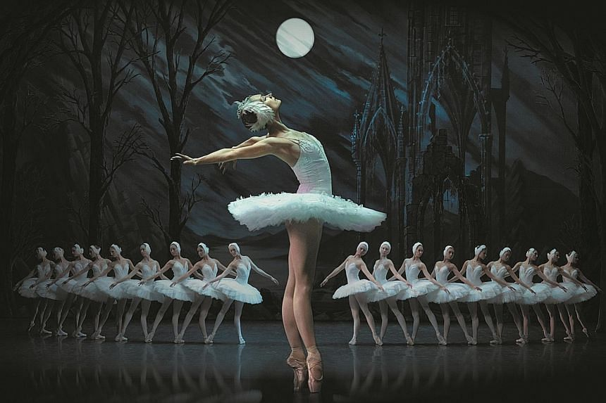 The St Petersburg Ballet Theatre, formed by Konstantin Tachkin, is restaging Tchaikovsky's Swan Lake (above) in Singapore.