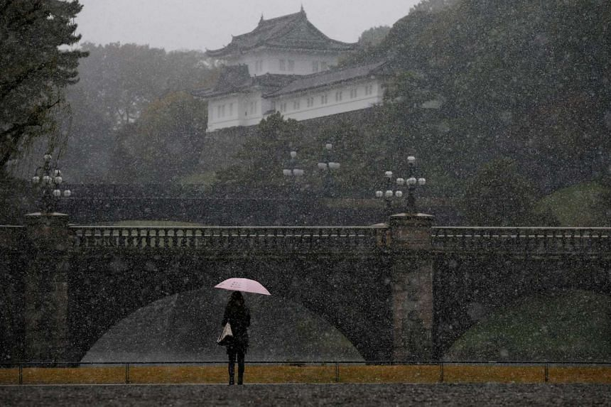 A tourist is seen during the first November snowfall in 54 years at the Imperial Palace in Tokyo, on Nov 24, 2016.