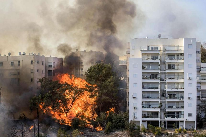 A bushfire raging in the northern Israeli port city of Haifa on Nov 24, 2016. Hundreds of Israelis fled their homes, while others were trapped inside as firefighters struggled to control raging bushfires.