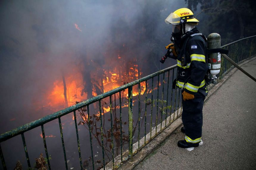 A firefighter extinguishes a wildfire in the northern city of Haifa, Israel Nov 24, 2016.