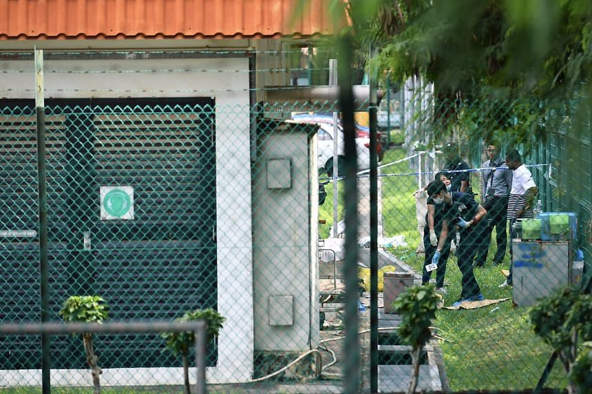 CID officers behind the substation at Carpark B where the body of a 54-year-old woman was found dead in a drain at Tanah Merah Ferry Terminal on Friday (Nov 25).
