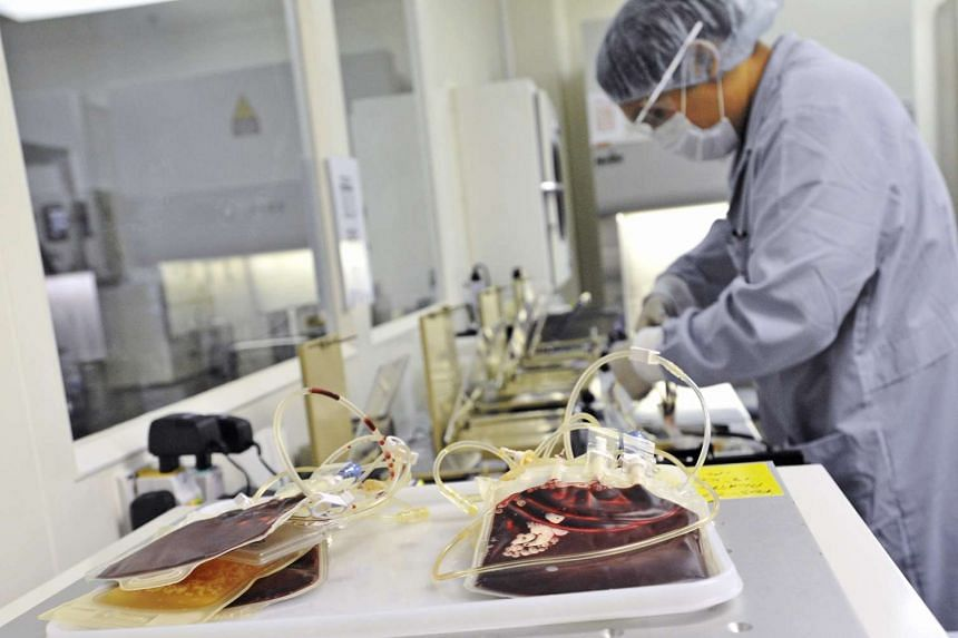 A medical technician processes cord blood into smaller amounts of usable stem cells at Singapore Cord Blood Bank (SCBB).