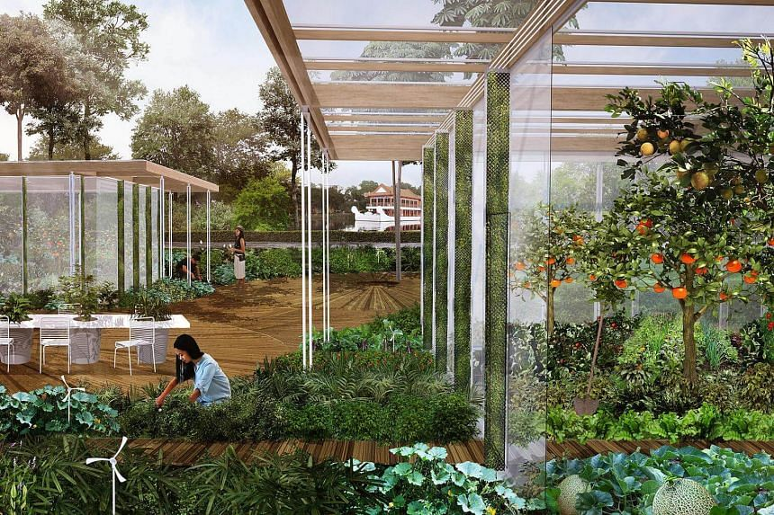 An artist's impression of an edible show garden from which fruit and vegetable produce will be served in a restaurant.