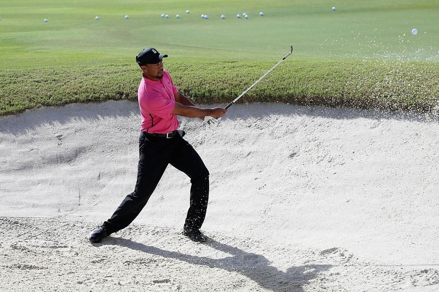 Tiger Woods chipping from a bunker ahead of the Hero World Challenge. The world No. 898 will make his competitive return today.