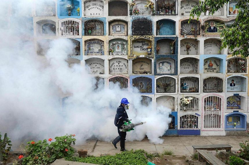 A specialist fumigates the Nueva Esperanza graveyard in the outskirts of Lima.