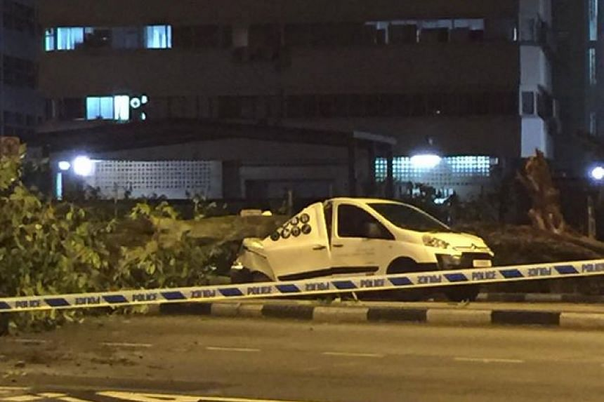 A tree fell across Aljunied Road, crushing a white vehicle and causing part of the road to be closed on Dec 13, 2016.