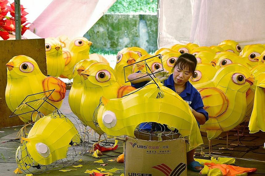"""Craftsmen are getting busy assembling cheery """"chick"""" lanterns in Chinatown. These lanterns will be featured in the street light-up there next month, as people usher in the Year of the Rooster. About 40 craftsmen from China, including 40-year-old Ma"""