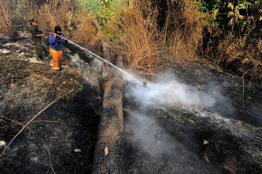 Rangers extinguishing a fire in Seulawah in Aceh province. The Indonesian government has announced a three-year national programme to prevent fires. Efforts will start at the village level.