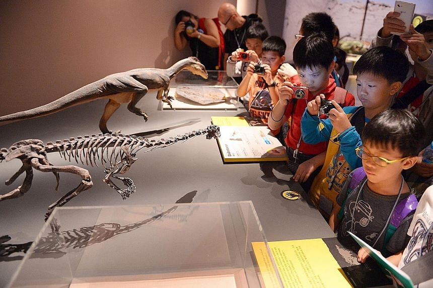 Pupils at the Dinosaurs: Dawn To Extinction exhibition held at the ArtScience Museum in 2014. They were part of The Straits Times Young Storymakers' Camp.
