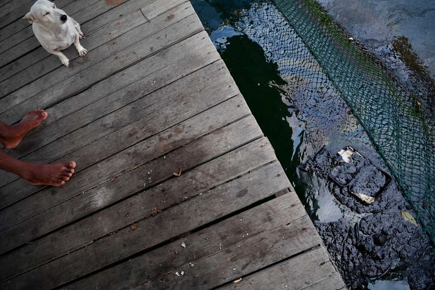 Crude oil is seen in a fish pen belonging to a fish farm on the outskirts of Pulau Ubin on Jan 4, 2017.