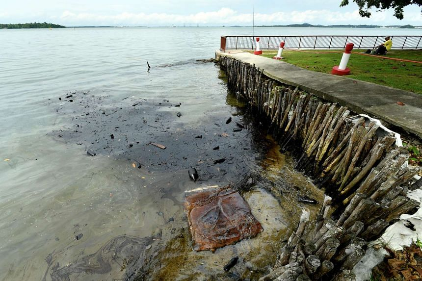 Oil on surface of water at Changi beach near carpark 5 on Jan 5, 2017.