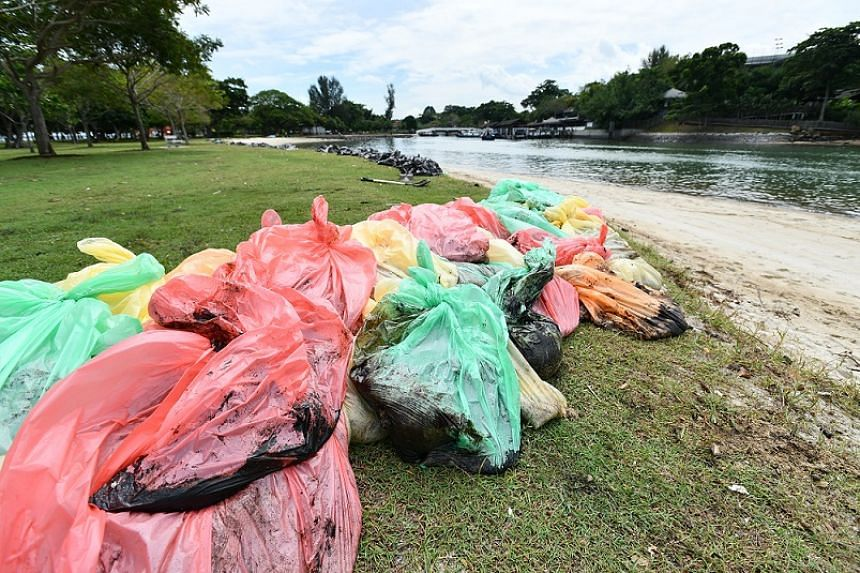 Trash bags filled with oil stained sand lined up along Changi Beach on Jan 5, 2017.