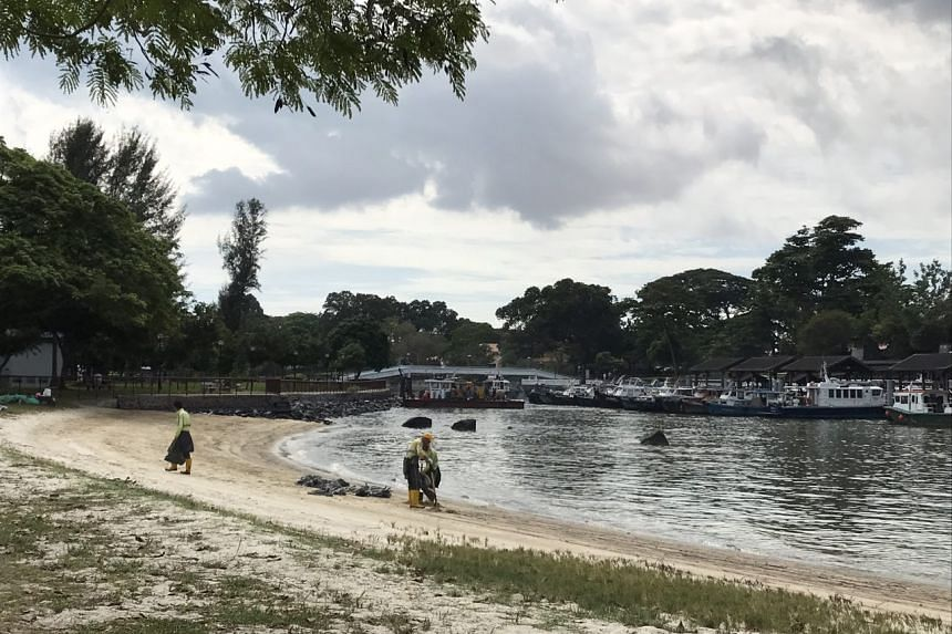 Workers pack up oil stained sand at Changi Beach on Jan 6, 2017.