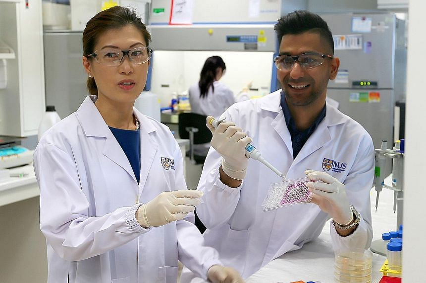Scientists Rachel Ee and Jasmeet Singh Khara are part of an NUS research team that has been developing corkscrew peptides to fight multi-drug resistant TB bacteria.
