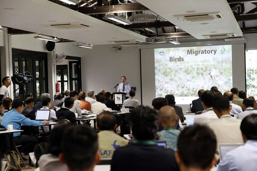 Mr Sam Tan, Minister of State for the Prime Minister's Office and Ministry of Manpower, give the opening address at the Arctic Migratory Bird Initiative East Asian-Australasian Flyway workshop 2017.