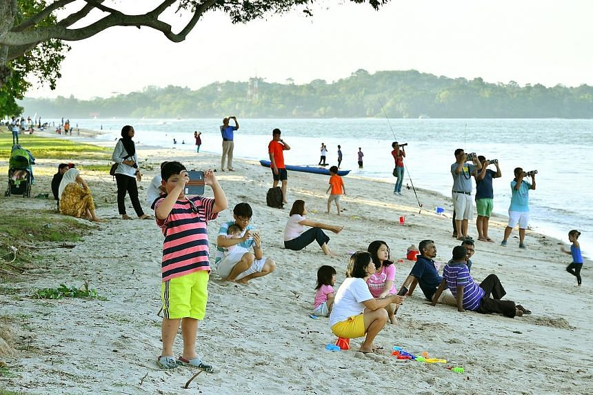 People enjoying plane-spotting at the reopened stretch of Changi beach yesterday, after cleanup operations were finished. Stretches of beach here were polluted with a black, tar-like substance after an oil spill caused by the collision between two ve