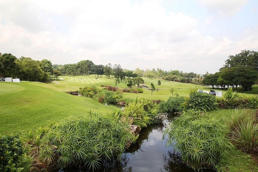 Top: The African Grey Crowned Crane, resident at Seletar Country Club since 2013. Above: Otters at the club, which is home to various species of flora and fauna. Seletar Country Club's effort to protect the environment while preserving its golf herit