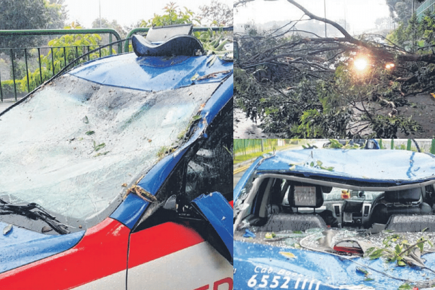 The taxi's rear windscreen was shattered.