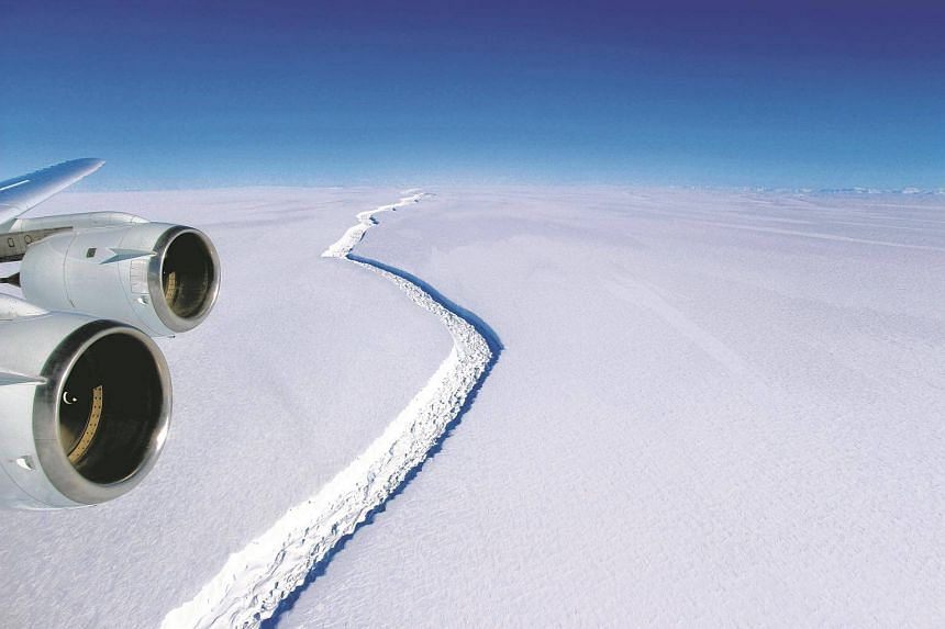 The Larsen C ice shelf, which is nearly as big as Scotland and the fourth largest of its kind in Antarctica, is poised to break off a piece nearly 2,000 square miles in size, or over 10 per cent of its total area.