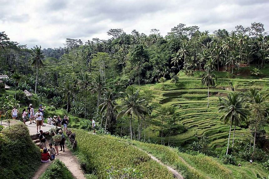 Bali, a pocket of ancient Hindu culture in Muslim-majority Indonesia, attracts millions of foreign tourists every year and is a particular favourite with visitors from neighbouring Australia.