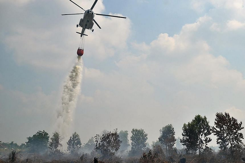 The military used Super Puma helicopters for water-bombing efforts in 2015 in Pekanbaru, capital of Riau province, which was shrouded by haze.
