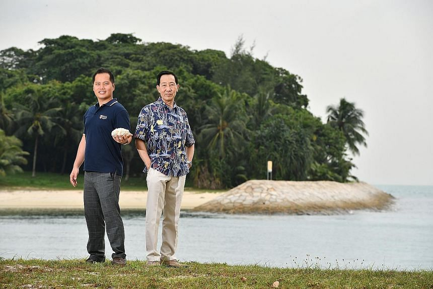 Dr Toh (holding a cauliflower coral) and Professor Chou on Lazarus Island, with a sea wall in the background. Scientists recorded a survival rate of more than 90 per cent after 213 corals grown in nurseries were transplanted onto sea walls on the isl