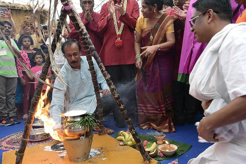 Crowds gathered in Little India yesterday to celebrate Pongal, a harvest festival that is typically observed by the Tamil community. Pongal is both the name of the festival and its signature dish - a sweet mixture of milk and rice cooked over fire in