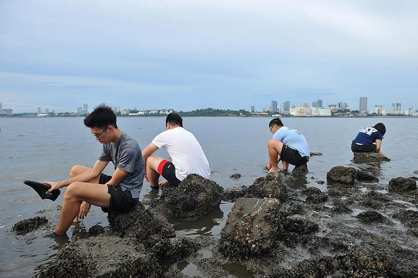 Volunteers washing up and changing out of their diving shoes after helping to rescue horseshoe crabs at the Mandai mudflats. They were among 86 volunteers taking part in the Nature Society (Singapore)'s Horseshoe Crab Research and Rescue Programme, w