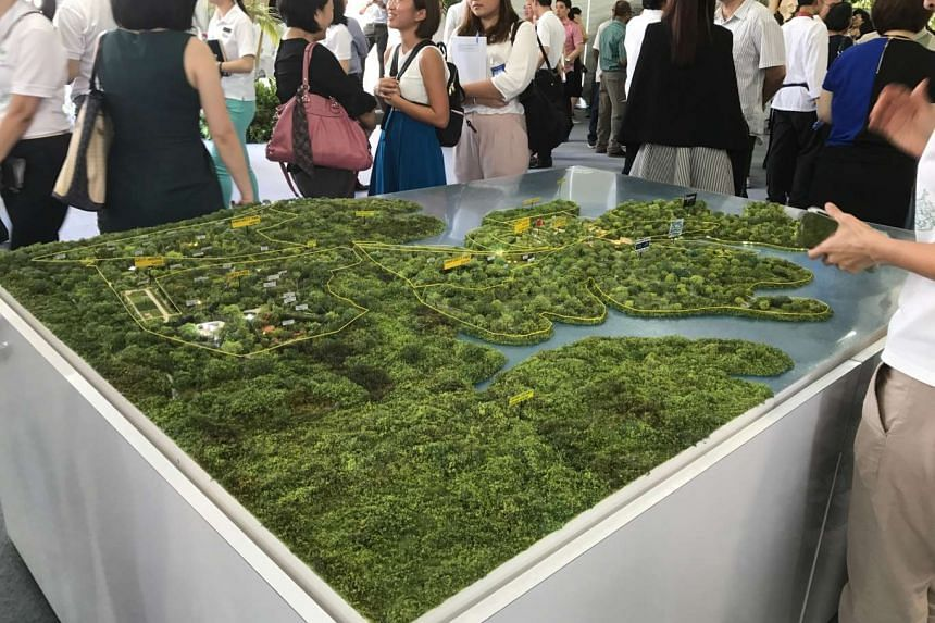 The massive Mandai makeover will include public spaces, such as green landscaped decks for picnics; and boardwalks along the edge of Upper Seletar Reservoir, that can be used by all, free of charge.