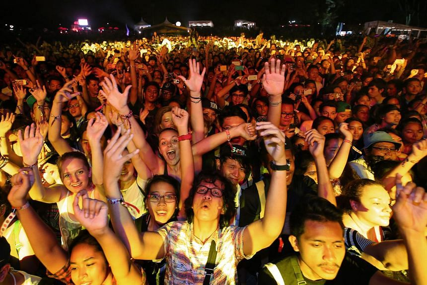 The crowd at the St Jerome's Laneway Festival.