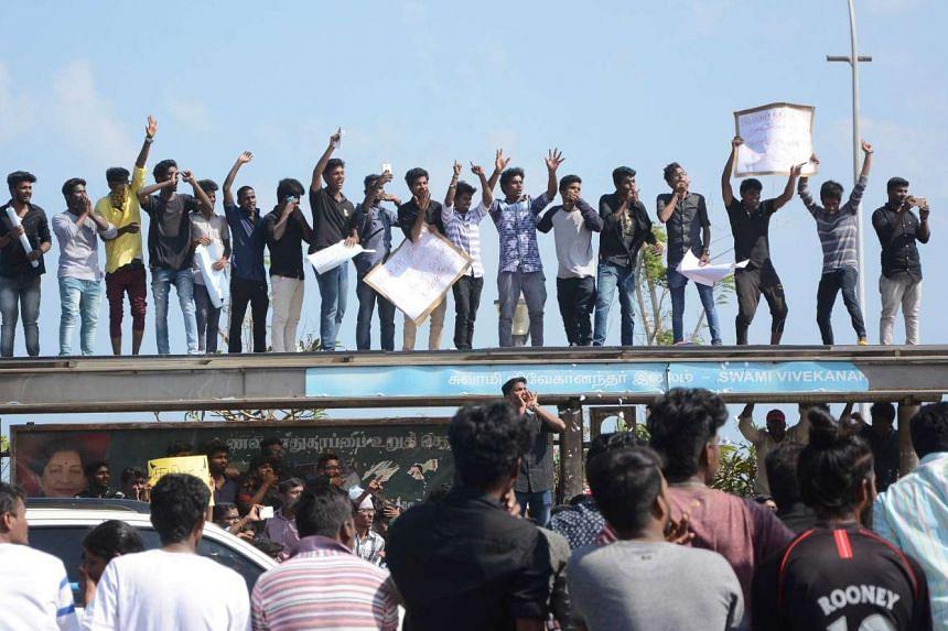 Indian students shouting slogans during a protest against the ban on the Jallikattu bull-taming ritual at Marina Beach at Chennai on Jan 18, 2017.