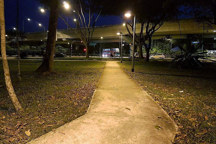 This path was built by the Building and Construction Authority to replace a desire line that gave nearby residents a more direct route to Bukit Timah Road. Desire lines, such as this path near Jurong East MRT station, are common here, resulting in ri