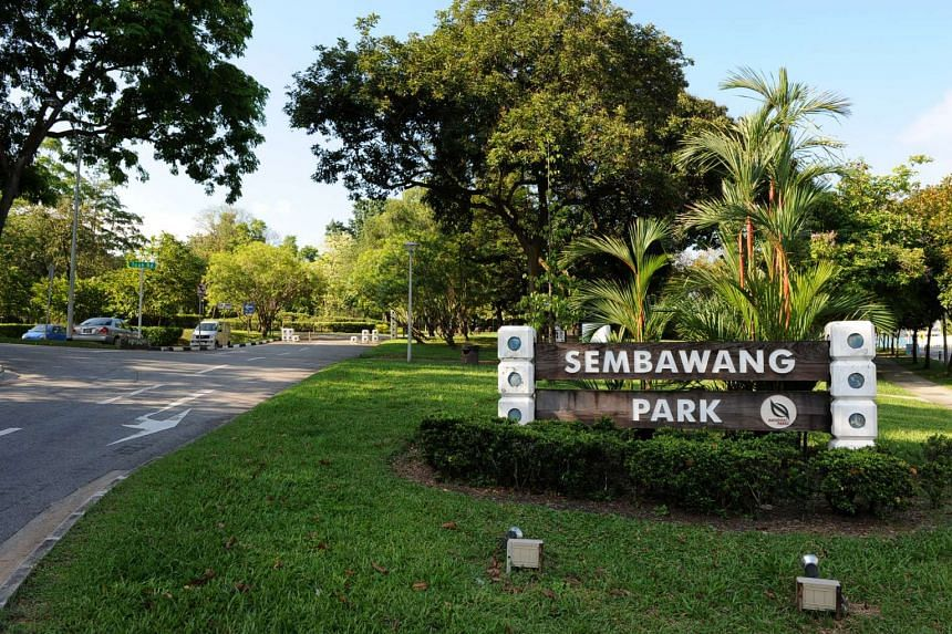 Thirty people are being investigated for suspected involvement in a public assembly without a police permit after they gathered at Sembawang Park on Saturday (Jan 21).