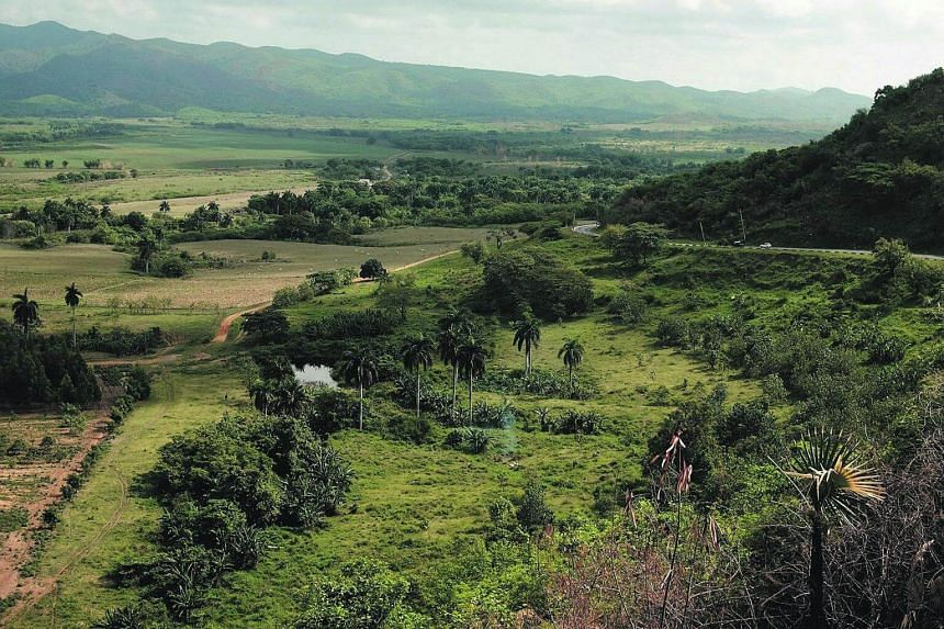 A view of the cuban countryside.