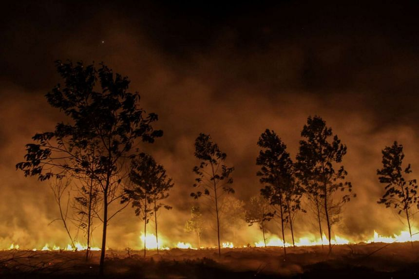 Indonesia's fire-prone Riau province declared a state of emergency on Tuesday (Jan 24).