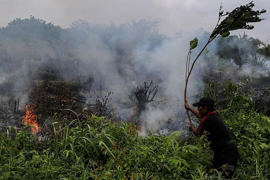 A man trying to put out a field fire in Pekanbaru, Riau, last Wednesday. The province has declared emergency status for forest and land fires for 96 days.