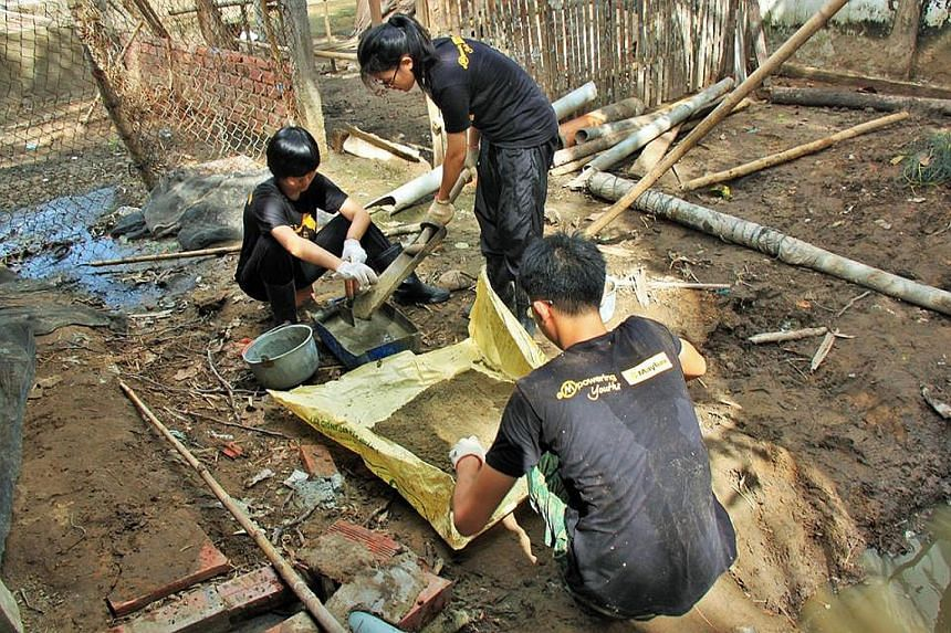 The treated waste from Project Mai can also be an organic fertiliser for farming by some villagers in Tra Vinh province. In the Philippines, NUS students planted mangrove trees to prevent floods from rushing inland and destroying houses. The students