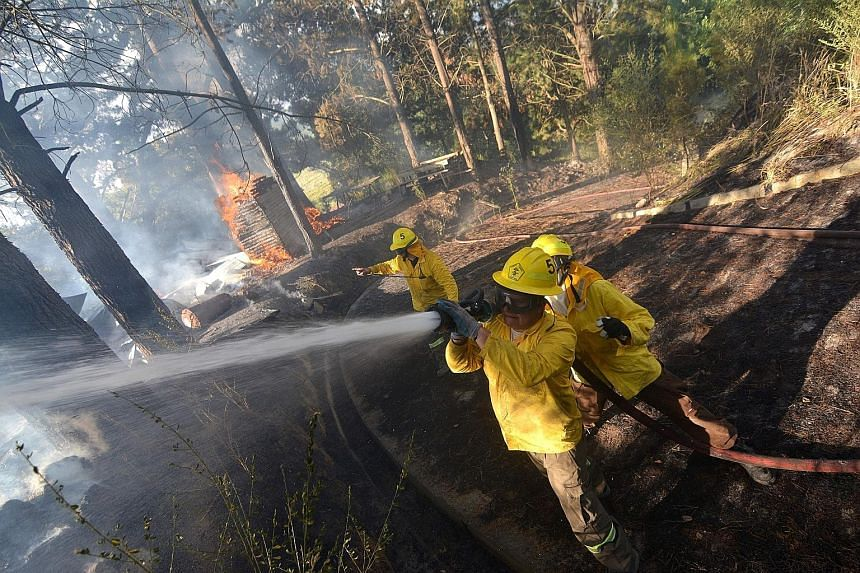 Chilean firefighters battling to contain a blaze in a forest in Concepcion, 450km south of the capital Santiago. Chile declared a state of emergency last week over the forest fires.