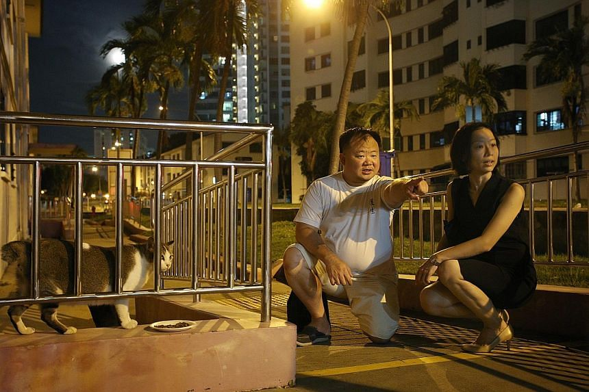 Team Dakota's Mr Chan Chow Wah, 43, and Ms Tan Peiying, 36, looking out for cats in distress during a visit to Dakota Crescent earlier this month.
