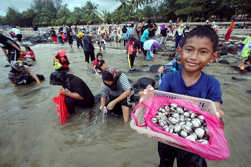 Ten-year-old Mohd Adam Haridh Amizi showing off the cockles he picked up at Batu Hitam beach in Kuantan, the state capital of Pahang, yesterday. Dozens of people rushed to the beach after hearing that the strong waves caused by the monsoon had washed