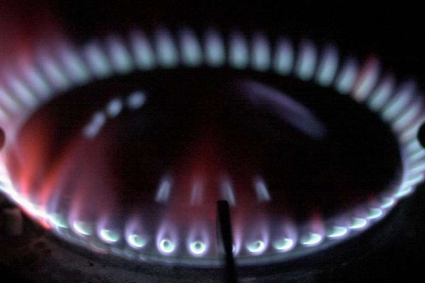 Gas supplier City Gas said they would be raising the gas tariff by 4.5 per cent for households from Feb 1 to April 30, 2017.