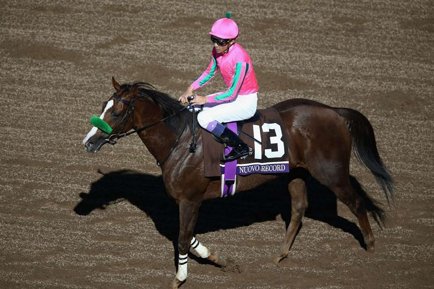 Jockey Yutaka Take aboard Nuovo Record prior to the Filly & Mare Turf race on day two of the 2016 Breeders' Cup World Championships on Nov 5, 2016.