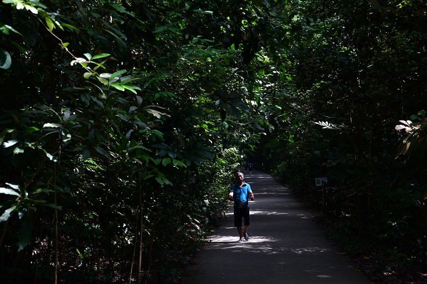 The tour also takes people to Bukit Timah Nature Reserve, where the battle for Bukit Timah took place.