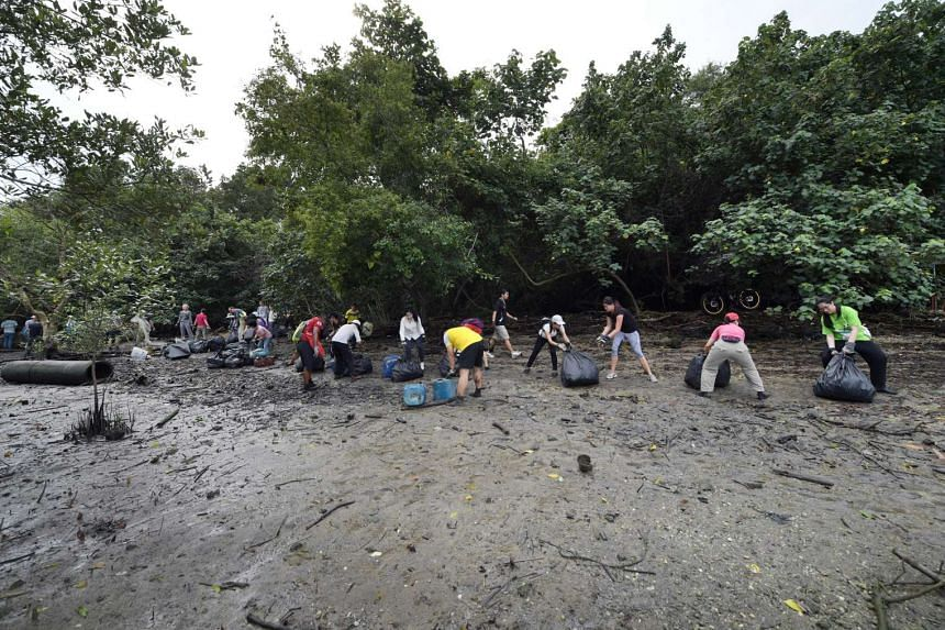 Saturday's clean-up drew a diverse crowd, ranging from NUS students to visitors from as far away as India and Serbia.